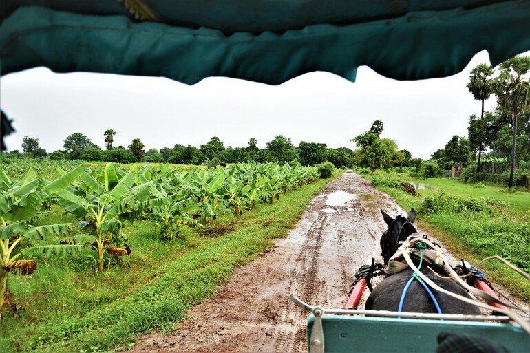 Inwa - Que ver en Mandalay