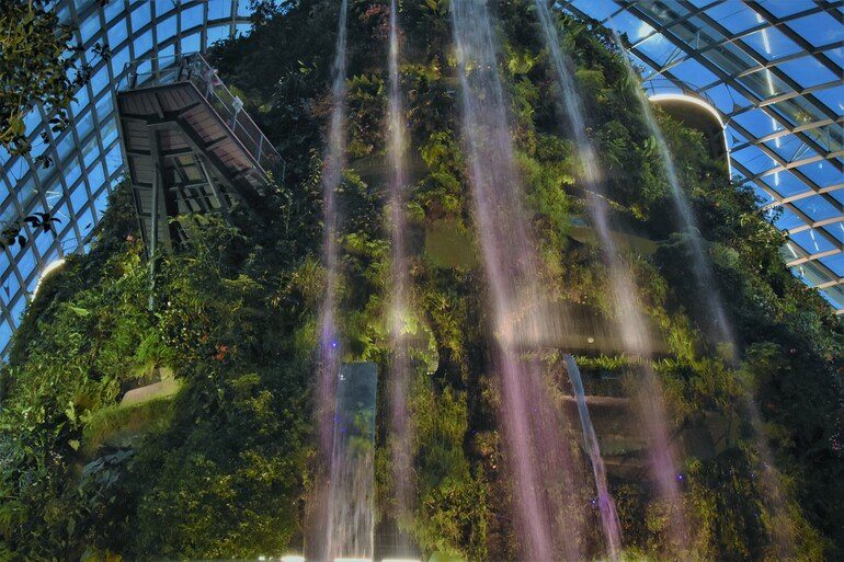 Cloud Forest -Gardens By the Bay