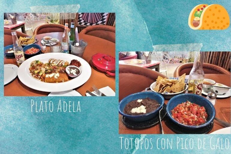Donde comer - Ver Playa del Carmen
