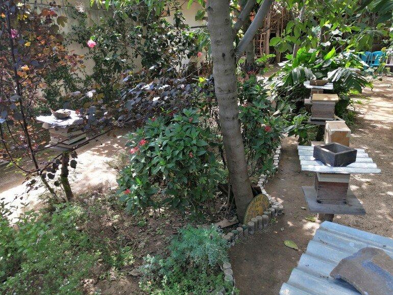 Taller de miel artesanal - Que ver en San Juan La Laguna