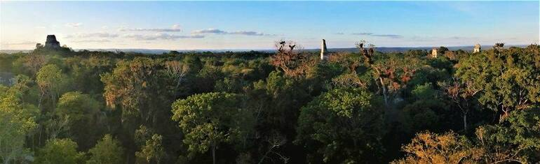vistas de Tikal panorámicas