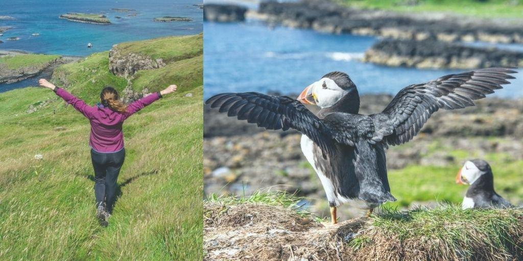 Visita a la isla de Hébridas de Staffa y Lunga
