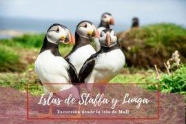 Staffa y Lunga - Pasaporte a la Tierra
