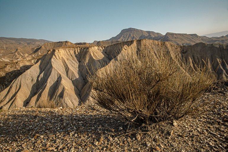 Desierto de Tabernas naturaleza Andalucía