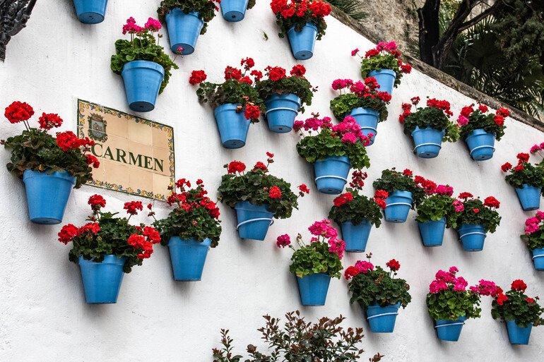 Calles bonitas que ver en Marbella